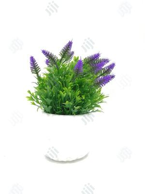 Potted Plants For Indoor Decoration | Garden for sale in Lagos State, Ikorodu