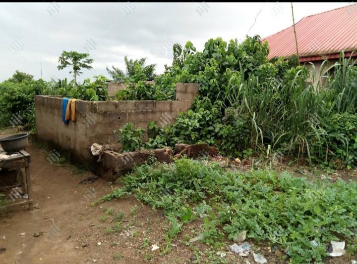 Archive: Half Plot of Land With Uncompleted Building for Sale in Ogun State.