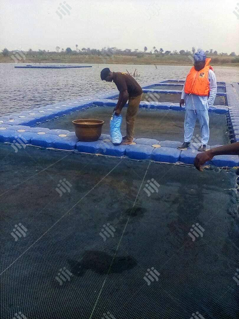 Fish Tarpurlin Pond | Farm Machinery & Equipment for sale in Asokoro, Abuja (FCT) State, Nigeria