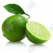 Drawf Lemon Tree Seeds | Feeds, Supplements & Seeds for sale in Lagos State, Ikeja