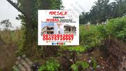 1 and Half Plots of Land for Sale at Akinbayo Oshinle Akure | Land & Plots For Sale for sale in Ondo State, Akure