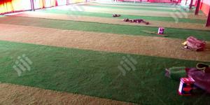 Dealers On Artificial Grass   Garden for sale in Katsina State, Kaita