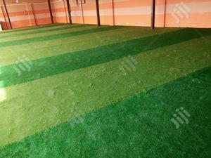 Suppliers Of Synthetic Turf | Garden for sale in Ebonyi State, Afikpo South