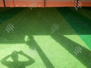 Suppliers Of Synthetic Turf | Garden for sale in Oyo State, Atisbo