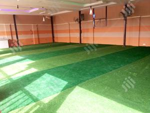 Suppliers Of Synthetic Turf | Garden for sale in Abia State, Isuikwuato