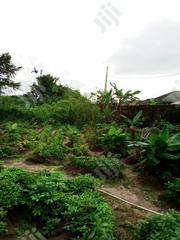 2 Acre of Land for Sale at Araromi Ibeju | Land & Plots For Sale for sale in Lagos State, Lekki Phase 1