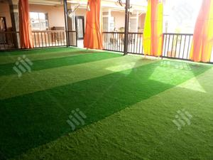 Dealers On Artificial Grass   Garden for sale in Yobe State, Gujba