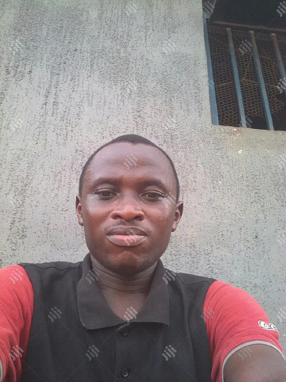 School Bus Driver   Driver CVs for sale in Aniocha South, Delta State, Nigeria