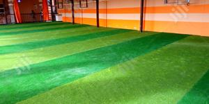 Dealers On Artificial Grass | Garden for sale in Abia State, Ohafia