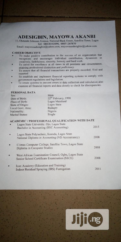 Accountant | Accounting & Finance CVs for sale in Amuwo-Odofin, Lagos State, Nigeria