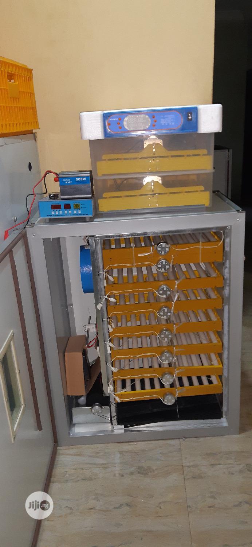 500 Capacity Incubator