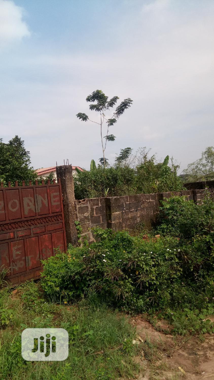 Genuine Plot of Land Measuring 100X200 for Urgent Sale