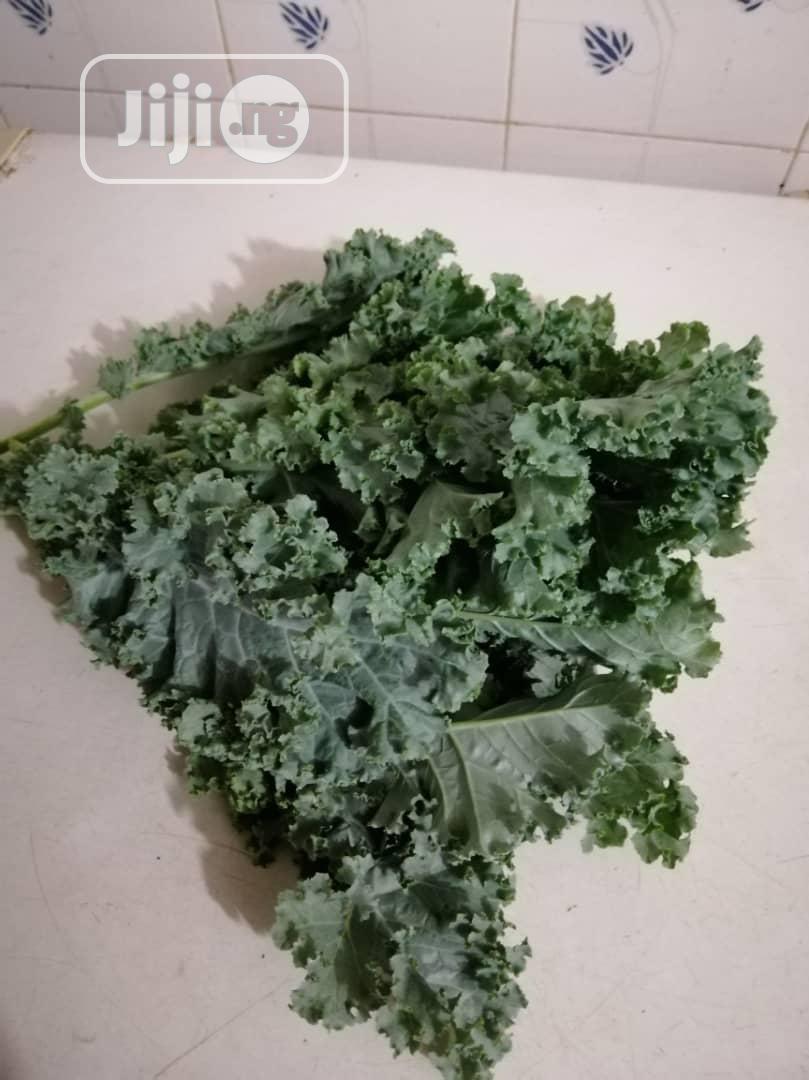 Kale Vegetable /Kg