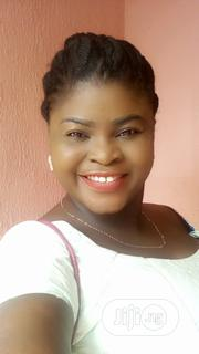 Personal Assistant | Accounting & Finance CVs for sale in Ogun State, Ifo