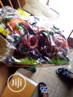 Your Colourful Flower For Fish Bowls And Aquerium | Fish for sale in Lagos State, Surulere