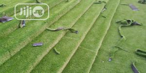 Suppliers Of Synthetic Turf | Garden for sale in Akwa Ibom State, Eastern Obolo