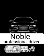 Noble Professional Driver And Operator | Automotive Services for sale in Kwara State, Ilorin South