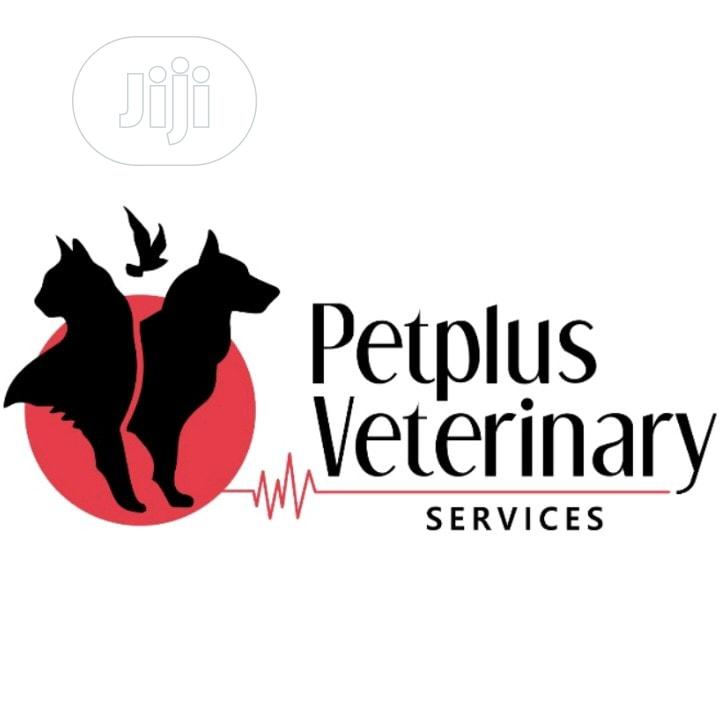 Petplus Veterinary Services