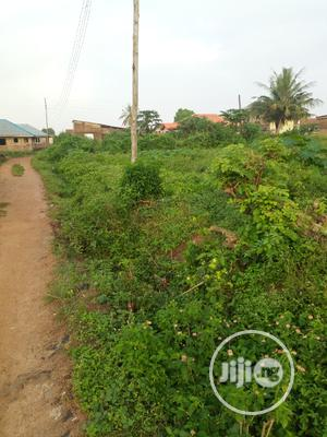 A Plot of Land at Lakoto-Ajibode UI Axis   Land & Plots For Sale for sale in Oyo State, Akinyele
