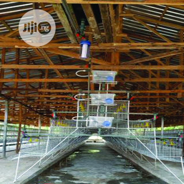 Battery Cage Customized For Sale