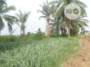 100% Ideal Vast Plots of Land. Now Selling in Asaba | Land & Plots For Sale for sale in Delta State, Oshimili South