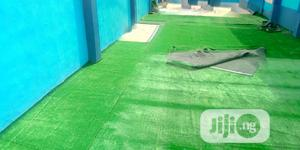 Dealers On Artificial Grass   Garden for sale in Osun State, Ife