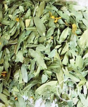 Wholesale Senna Leaf Organic Senna Leaves PAINT RUBBER   Feeds, Supplements & Seeds for sale in Plateau State, Jos