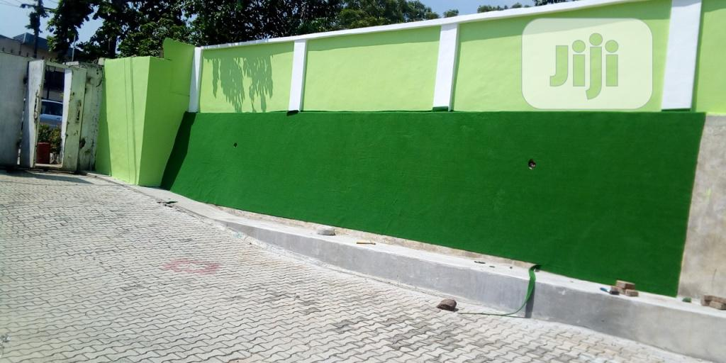 Wall Creeping Artificial Grass In Nigeria By Bethelmendels | Landscaping & Gardening Services for sale in Ikeja, Lagos State, Nigeria