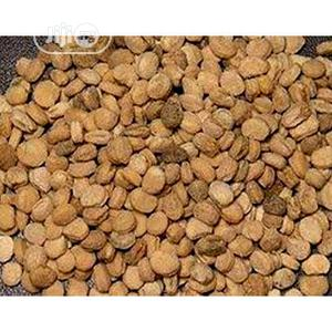 Ginger Seeds Organic Ginger Seeds   Feeds, Supplements & Seeds for sale in Plateau State, Jos