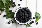 Fresh Black Berry Fruit KG | Feeds, Supplements & Seeds for sale in Plateau State, Jos