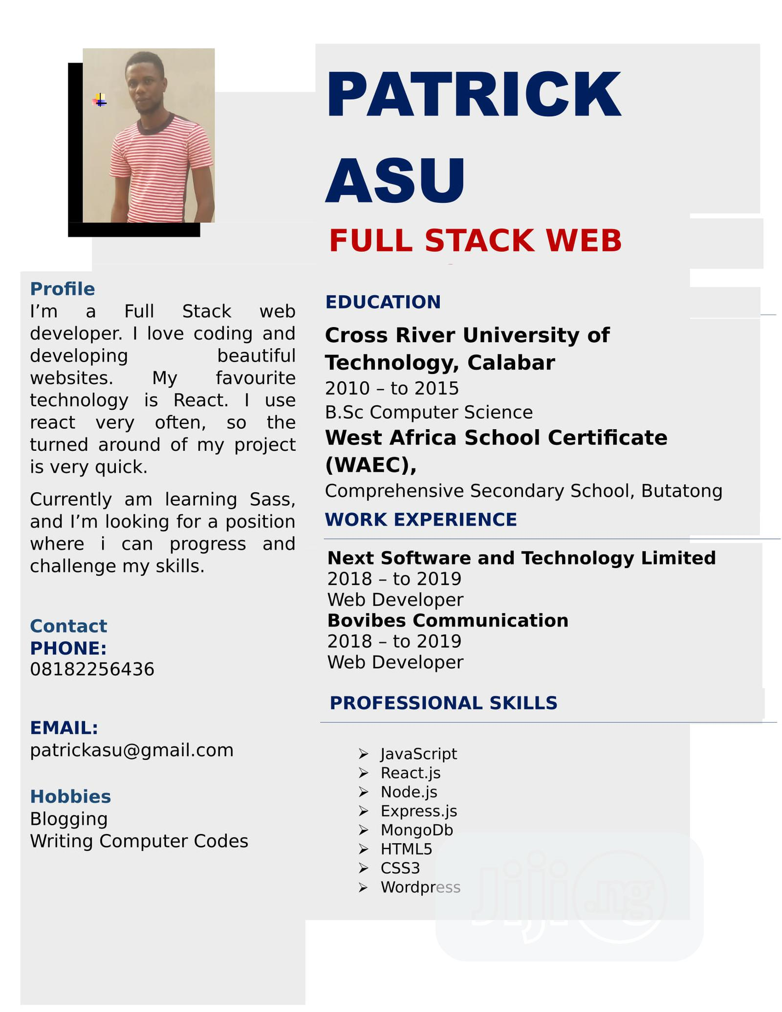 Web Developer | Computing & IT CVs for sale in Ajah, Lagos State, Nigeria