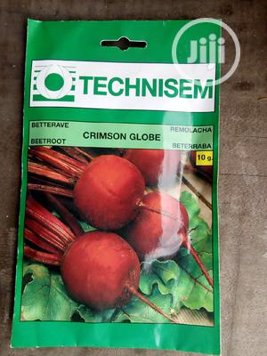 10g Crimson Globe Beetroot Hybrid Seed   Feeds, Supplements & Seeds for sale in Delta State, Uvwie