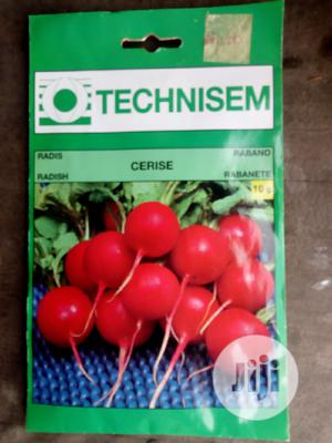 10g Radish Hybrid Seed   Feeds, Supplements & Seeds for sale in Delta State, Uvwie
