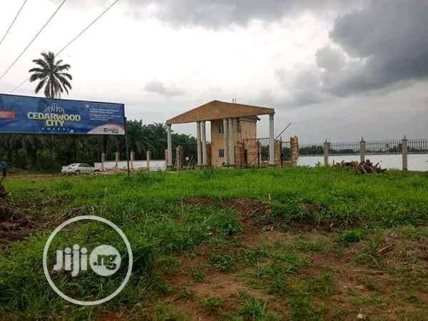 Archive: Land Directly Facing Express Along Airport Road Owerri (Cedarwood City