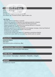 Advertising & Marketing CV | Advertising & Marketing CVs for sale in Lagos State, Lagos Island