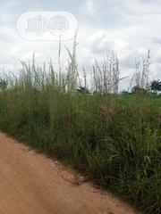 300 Plots In Nwafija Orumba South LGA Of Anambra State For Sale | Land & Plots For Sale for sale in Anambra State, Orumba