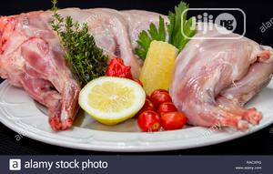 Rabbit Meat (Eat Healthy Meat!!) Always   Meals & Drinks for sale in Lagos State, Ikeja