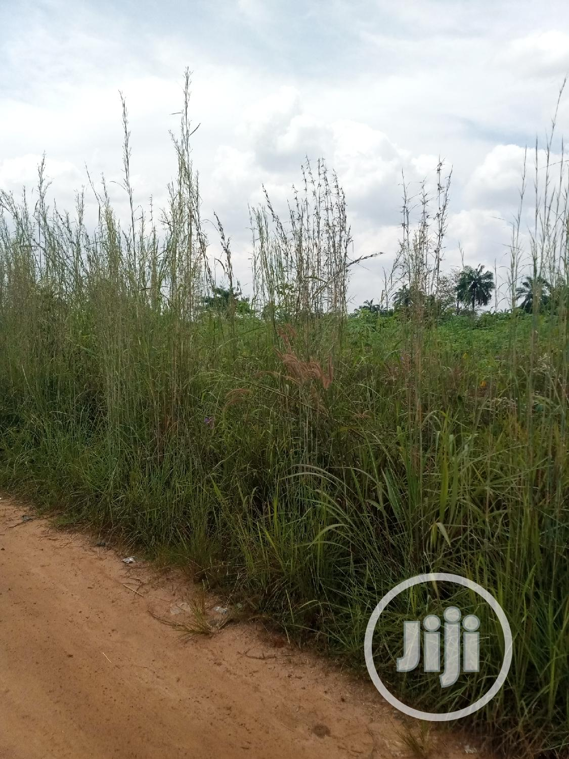 Lands In Anambra State For Sale
