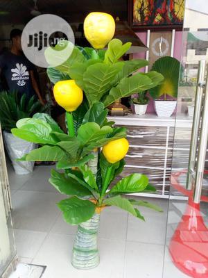 Original & Quality Artificial Garden & Home Plant.   Garden for sale in Lagos State, Surulere