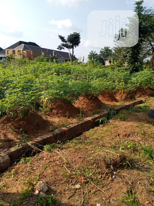 Half Plot of Land for Sale in Awka, Isu Area   Land & Plots For Sale for sale in Awka, Anambra State, Nigeria