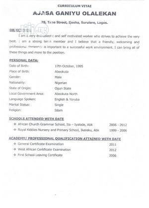 My Curriculum Vitae   Customer Service CVs for sale in Lagos State, Surulere