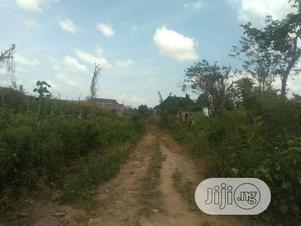 Virgin Land for Sale at Federal Housing | Land & Plots For Sale for sale in Osogbo, Osun State, Nigeria