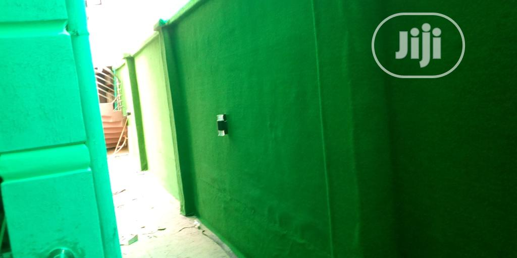 Olive Green Wall Grass