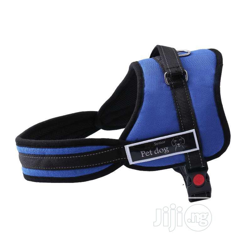 Harness For Dogs Of All Ages