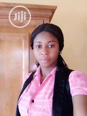 Company Secretary At Arik Air | Legal CVs for sale in Lagos State, Ikotun/Igando