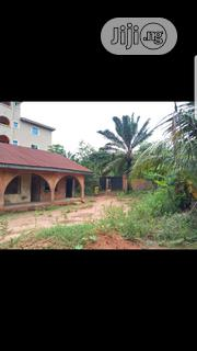 1.5 Plots of Land in Abubor Nnewichi Nnewi North Anambra State | Land & Plots For Sale for sale in Anambra State, Nnewi