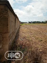 100by100 Plot of Land for Sale Opposite Isu Onicha Local Government | Land & Plots For Sale for sale in Ebonyi State, Ohaozara