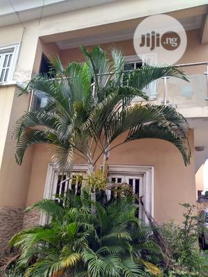 Exotic 4bed Duplex For Rent At Leeki Phase1   Houses & Apartments For Rent for sale in Lagos State, Lekki