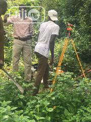 Surveyed Farmig Land. | Land & Plots For Sale for sale in Osun State, Isokan