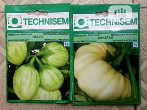 5g Hybrid Garden Egg Seeds   Feeds, Supplements & Seeds for sale in Delta State, Uvwie